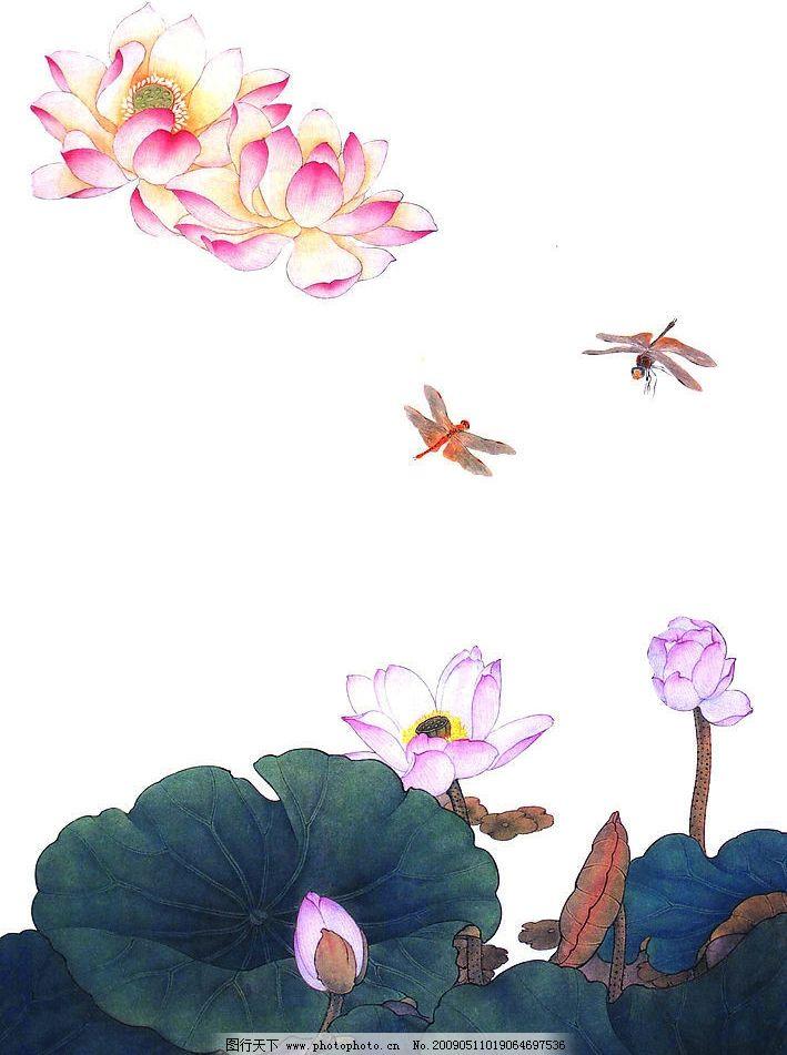 花卉画谱 工笔画线描 茶花篇 菊花篇 牡丹篇 荷花篇 近代绘画