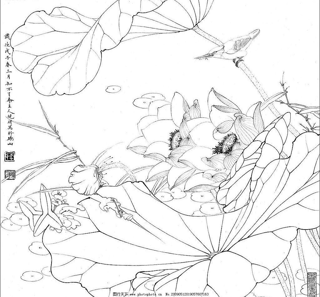 白描 荷花 翠鸟 文化艺术 绘画书法