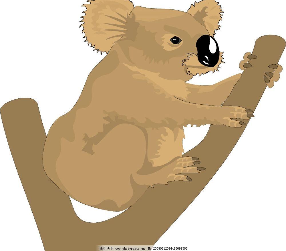 考拉 树袋熊 生物世界 野生动物 矢量图库 wmf