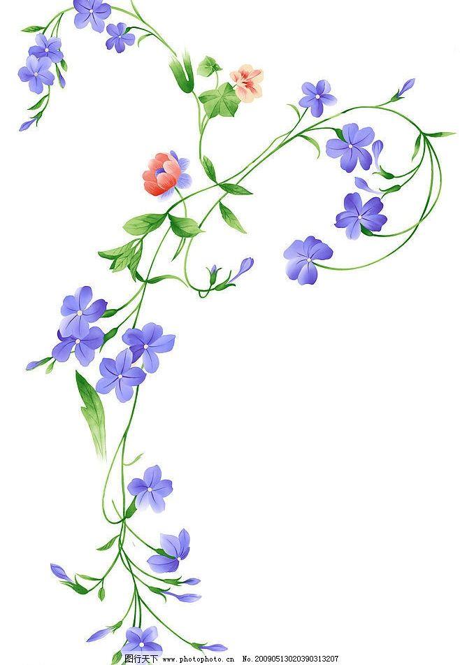 丁香花 兰花 藤 底纹边框 花边花纹 设计图库