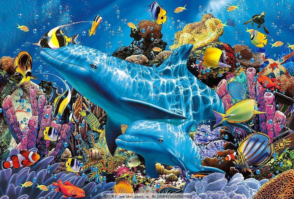 海豚 各类鱼类 珊瑚 海底世界 生物世界 其他 设计图库 72dpi jpg