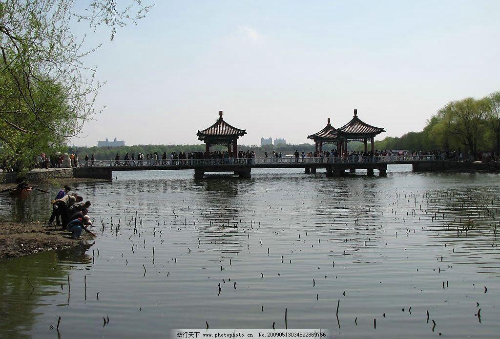 湖面 湖水 南湖 绿色 凉亭 桥 公园 长春 天空 自然景观 自然风景