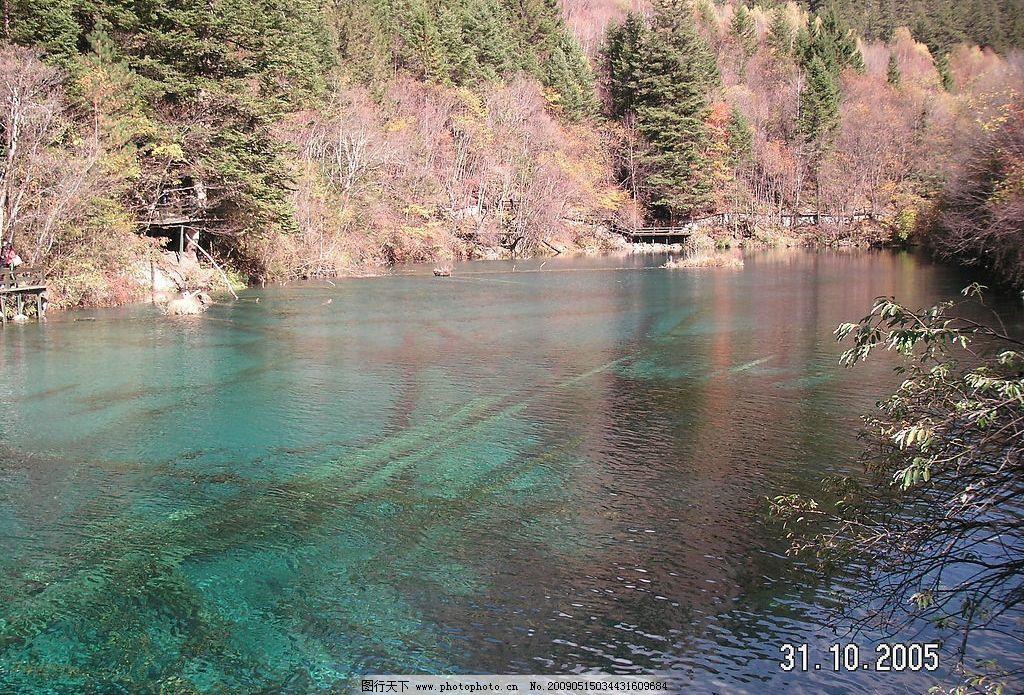 九寨沟 春水 湖水 树木 绿如蓝 清澈 江 自然景观 山水风景 摄影图库