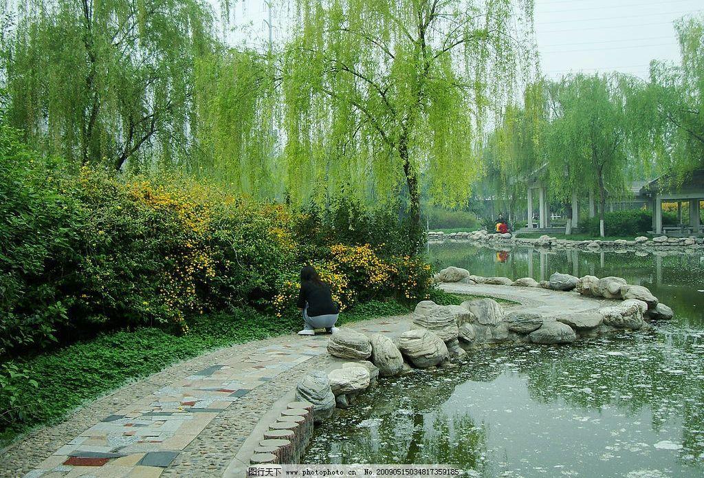 园林景观素材湖水