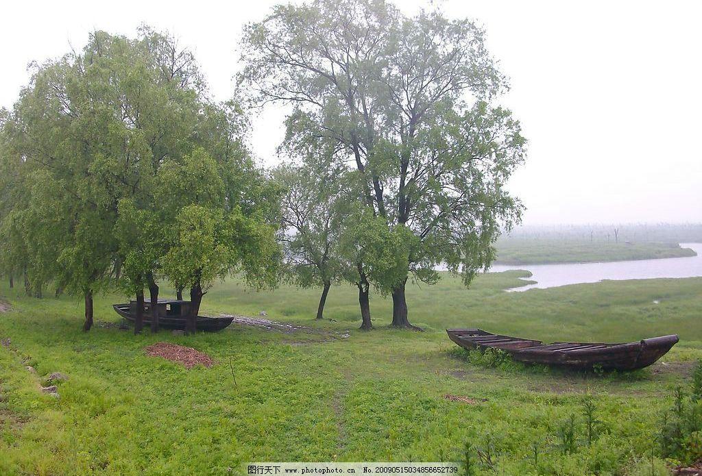 湖乡风光 木舟 草地 柳树 自然景观 自然风景 摄影图库 230dpi jpg