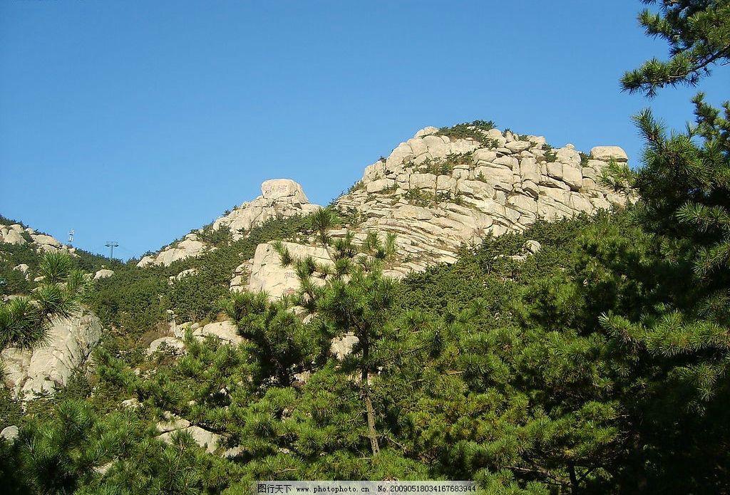 崂山上的松树林 青岛 崂山 松树林 石头 蓝天 绿色 旅游摄影 自然风景