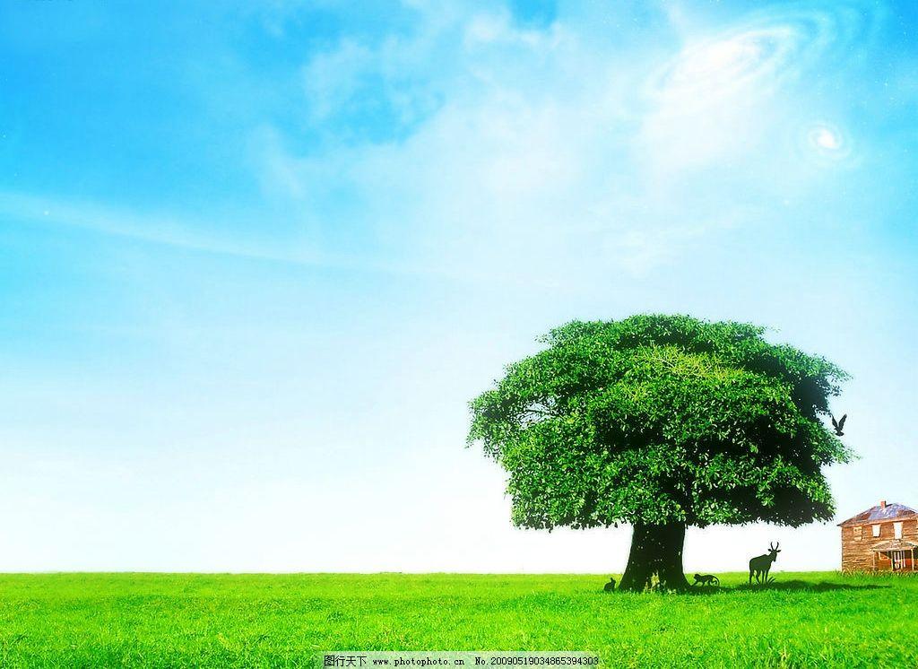 美丽风景 日出 蓝天 白云 云层 天空 树木 景色 草地 自然景观 自然