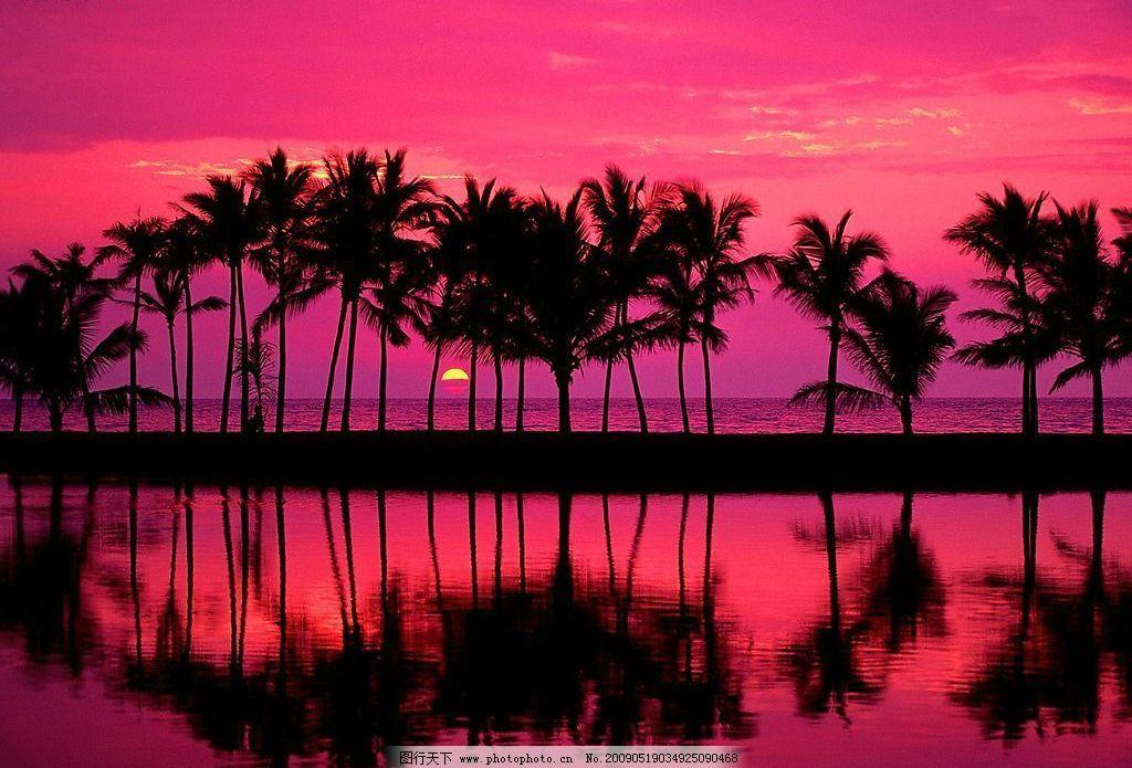 夏威夷风光 夏威夷 风光 红色 倒影 大海 日出 椰子树 红日 朝霞 晚霞