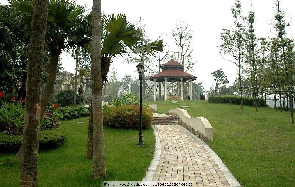 园林 风景 亭子 石头 内庭 植物 小径 建筑园林 园林建筑 摄影图库