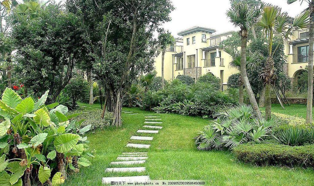 园林 风景 石头 内庭 植物 小径 建筑园林 园林建筑 摄影图库 300dpi