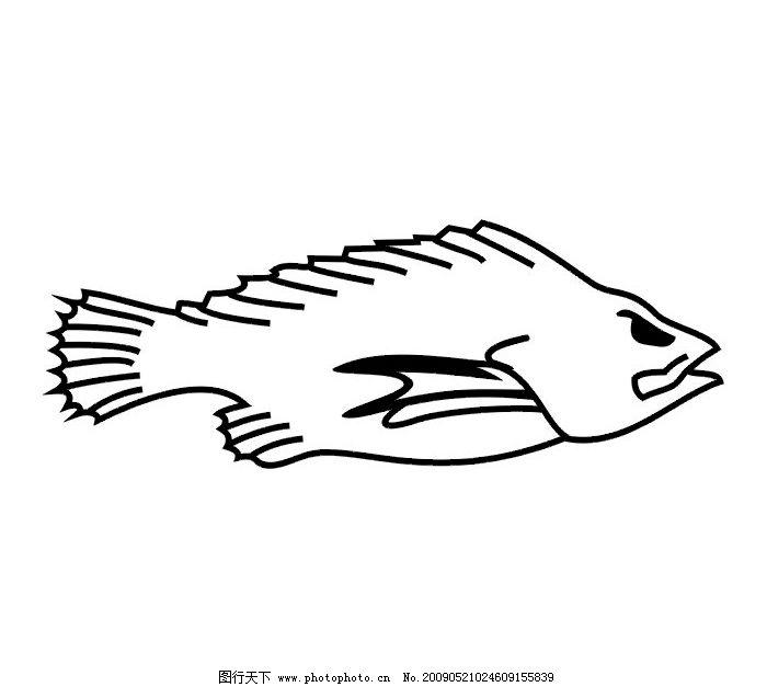 海洋鱼 鱼 鱼类纹身 生物世界 鱼类 矢量图库 cdr