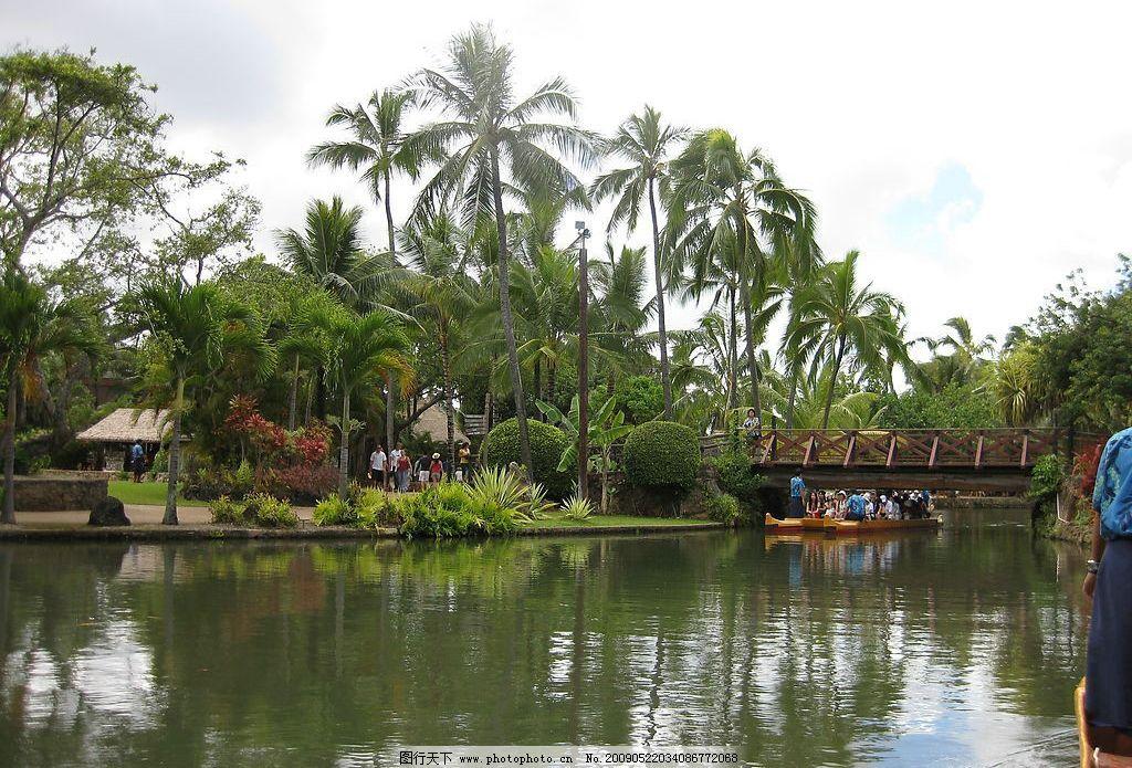 夏威夷 度假 园林 风景 水 树 倒影 游玩 拍照 摄影 旅游摄影 国外