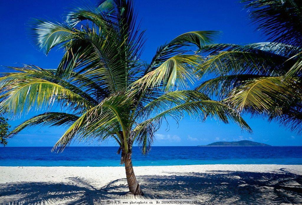 海南风 沙滩 海水 蓝天 椰子树 旅游摄影 自然风景 摄影图库