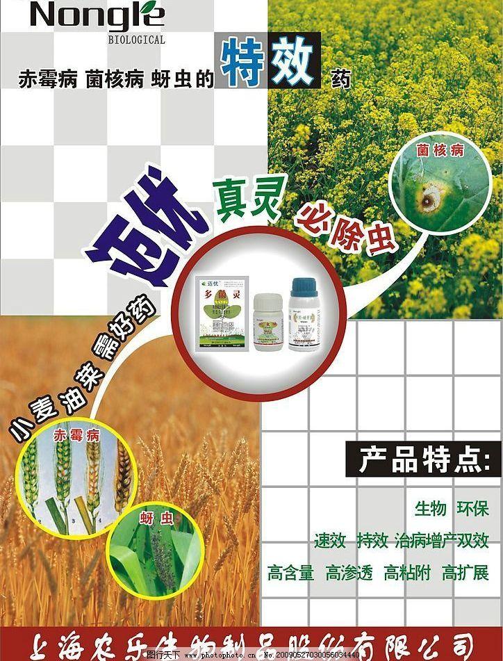 海报 单页 宣传单 展板 画册 药 麦子 油菜 广告设计 海报设计