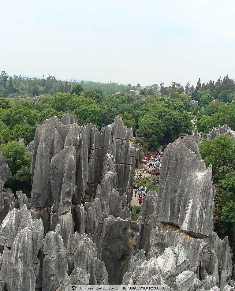 云南石林 石林 绿树 蓝天 云南 旅游摄影 自然风景 摄影图库 72dpi