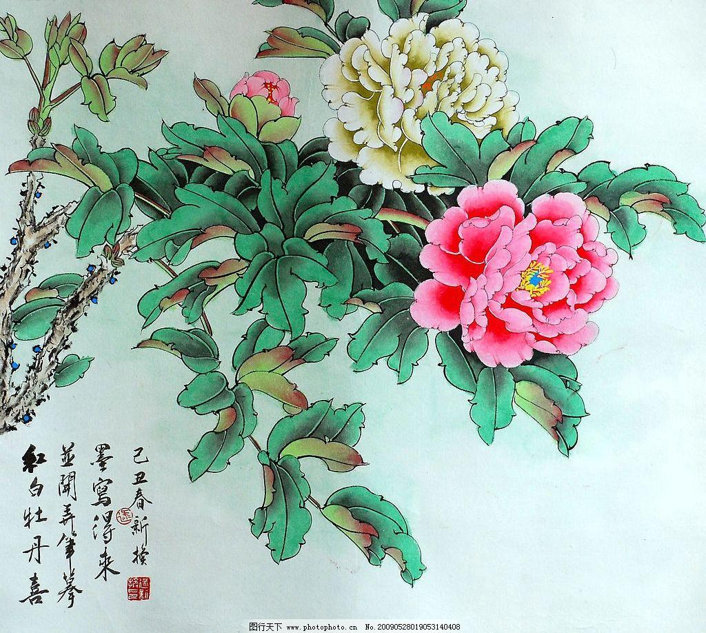 红白牡丹喜 牡丹 画家 工笔 牡丹花 花 工笔画 文化艺术 绘画书法