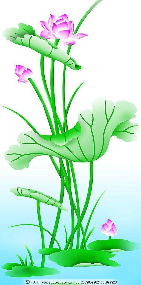 荷花 莲花 莲 自然景观 其他 设计图库 300dpi jpg