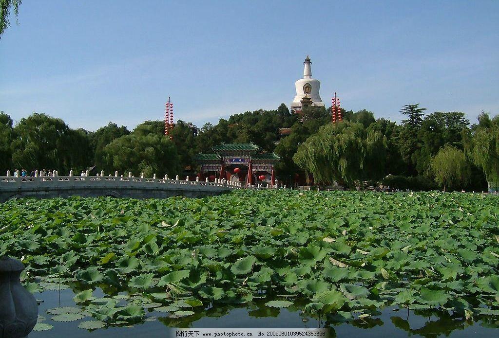 夏天的北京北海公园图片