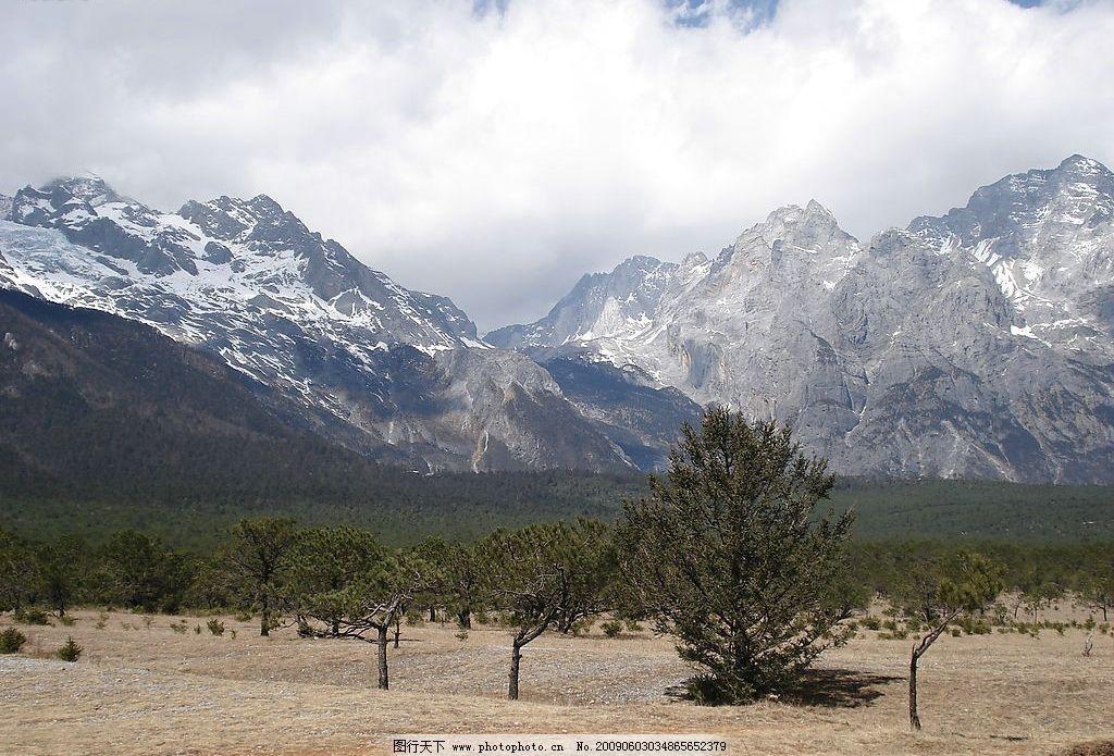 香格里拉雪山绿地 蓝天 雪山 森林 荒地 自然景观 自然风景 摄影图库