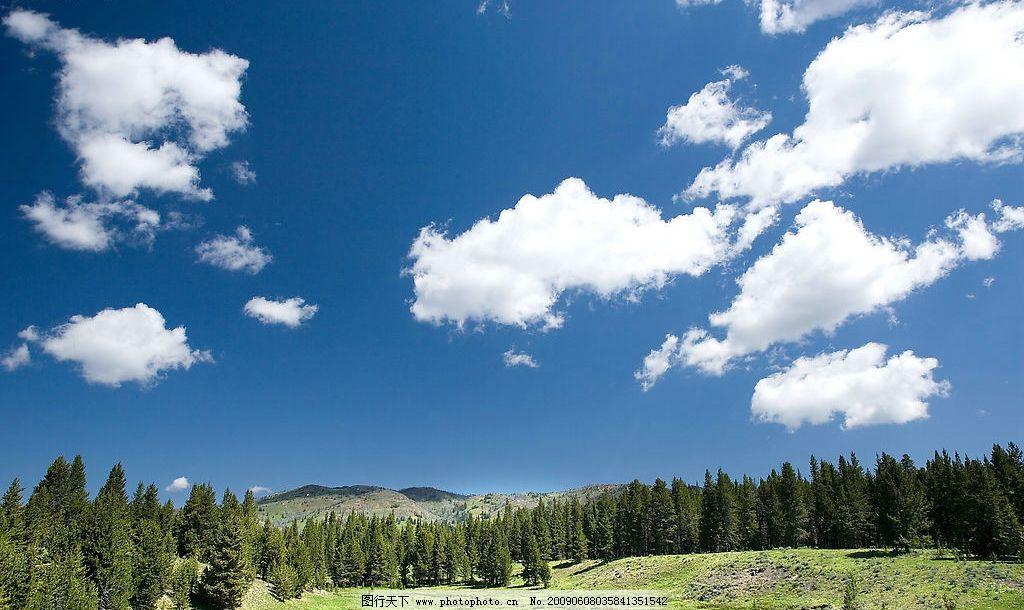 天空 蓝天 白云 树木 生物世界 树木树叶 摄影图库 300dpi jpg