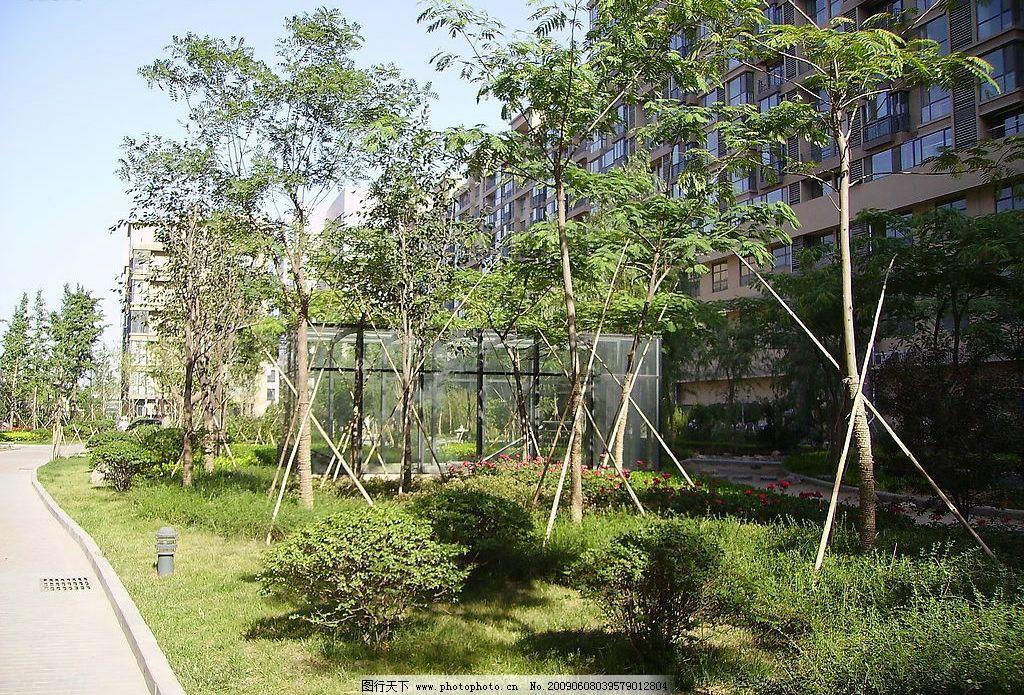 园林小品 绿色 小区 建筑园林 园林建筑 摄影图库