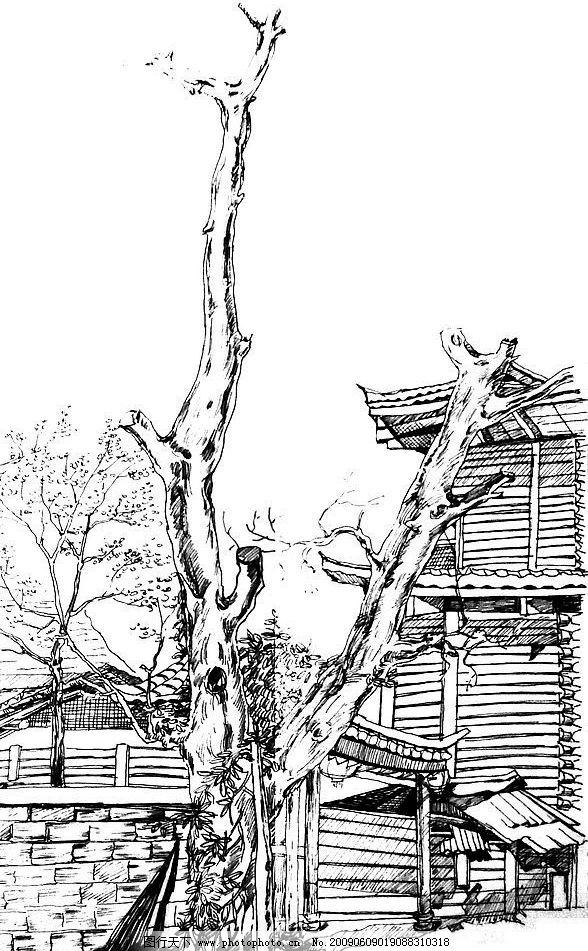 速写 绘画 风景 树 文化艺术 绘画书法