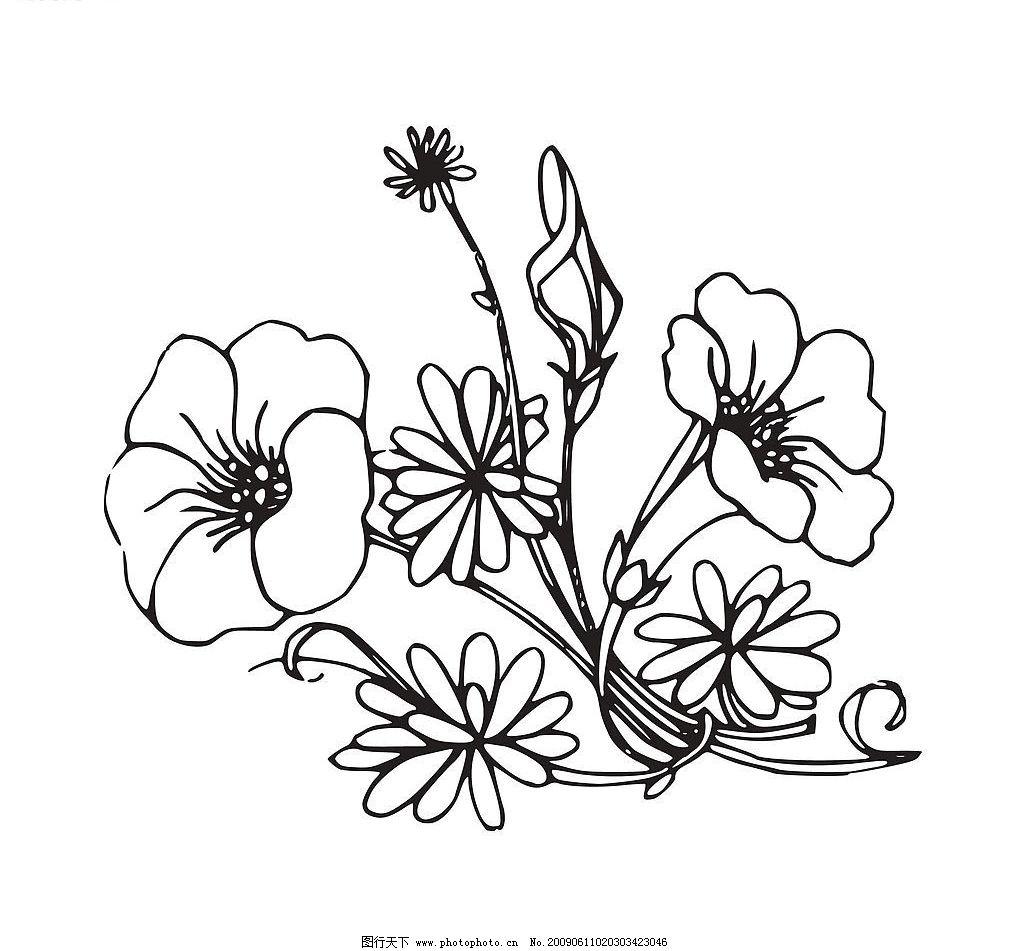花朵 黑白花 底纹边框 花边花纹 设计图库
