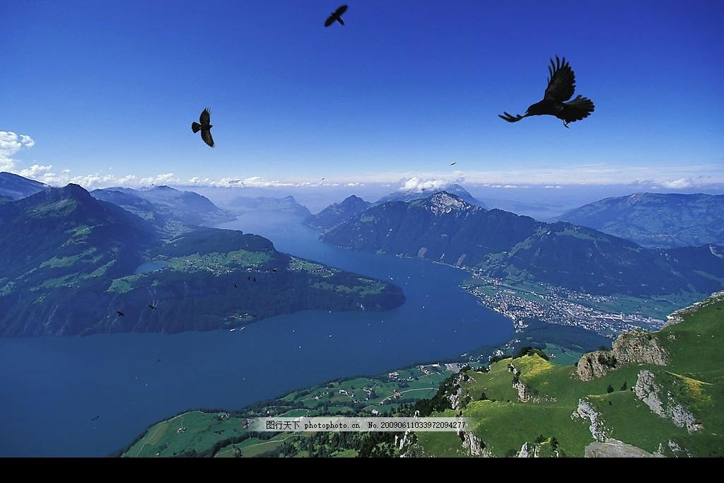 琉森湖畔 瑞士 风景 鹰 国外旅游 摄影图库