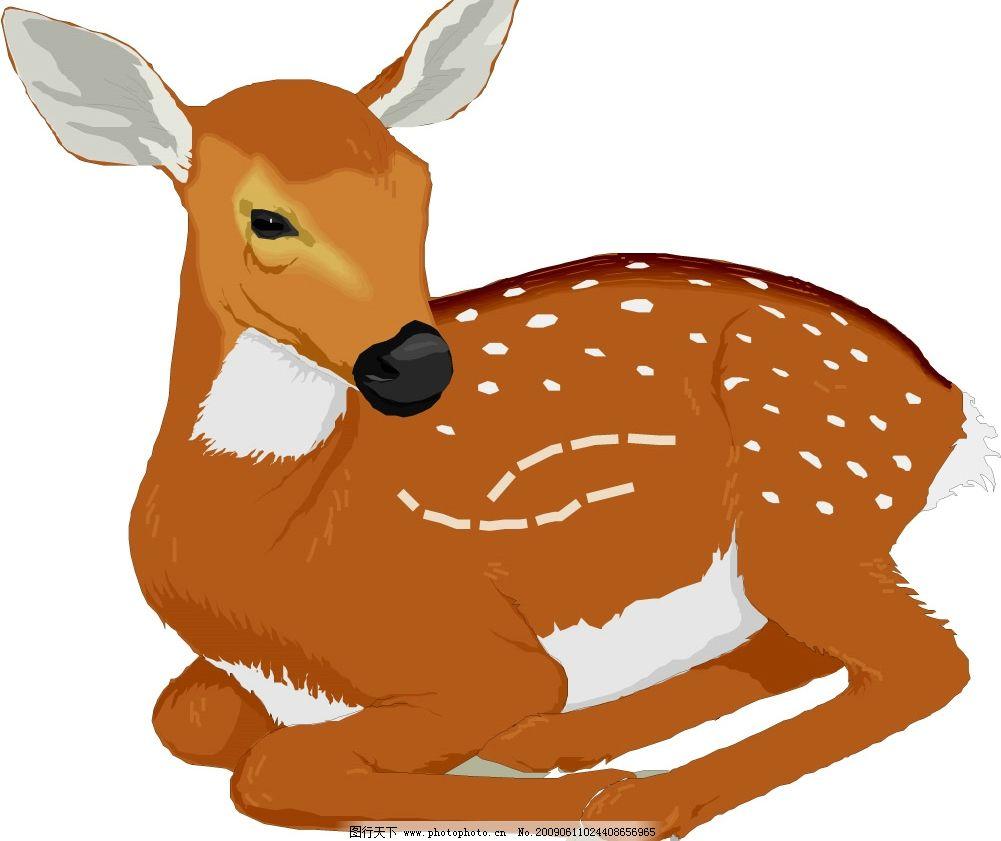 梅花鹿 小鹿 鹿 生物世界 野生动物 矢量图库 wmf