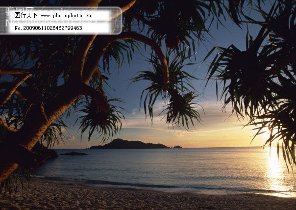海边风光 海滨 海滩 旅游摄影 摄影图 休闲 椰子树 游泳 椰子树 海滨