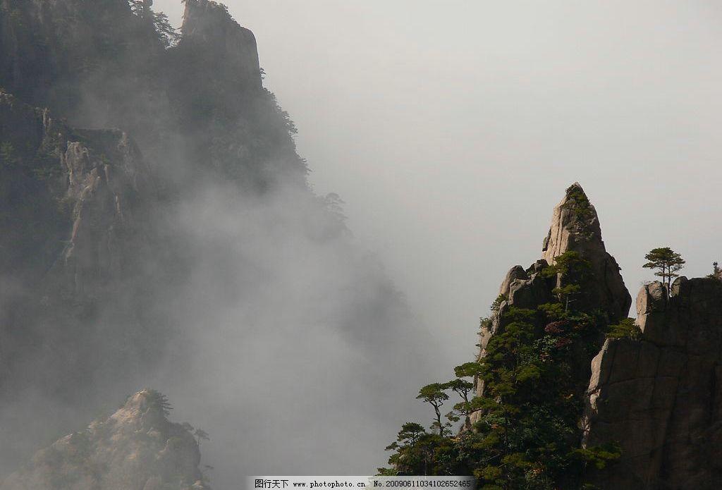 黄山晨雾 黄山 云海 独峰 松树 峭壁 旅游摄影 自然风景 摄影图库 72