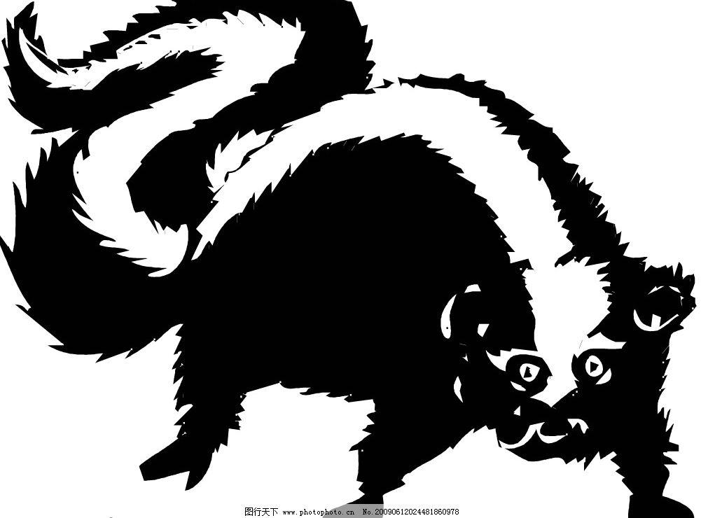 臭鼬 鼬 生物世界 野生动物