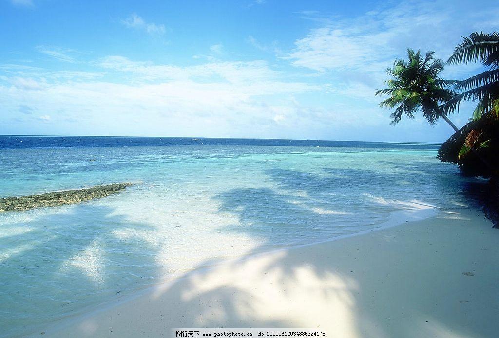 海边风景 美丽风景 海边 海水 蓝天 白云 云层 天空 树木 椰树 自然