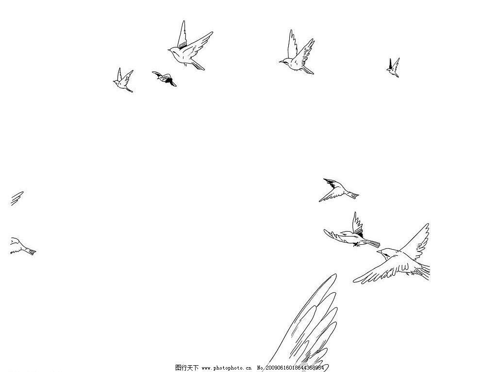 鸟群 手绘 黑白 漫画 鸟 动漫动画 其他 设计图库 300dpi jpg