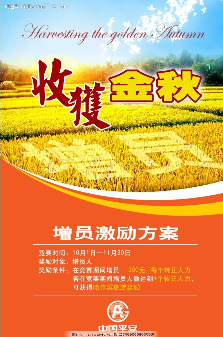 收获金秋 星星 增员 激励 方案 保险公司 秋收 麦子 底纹 海报