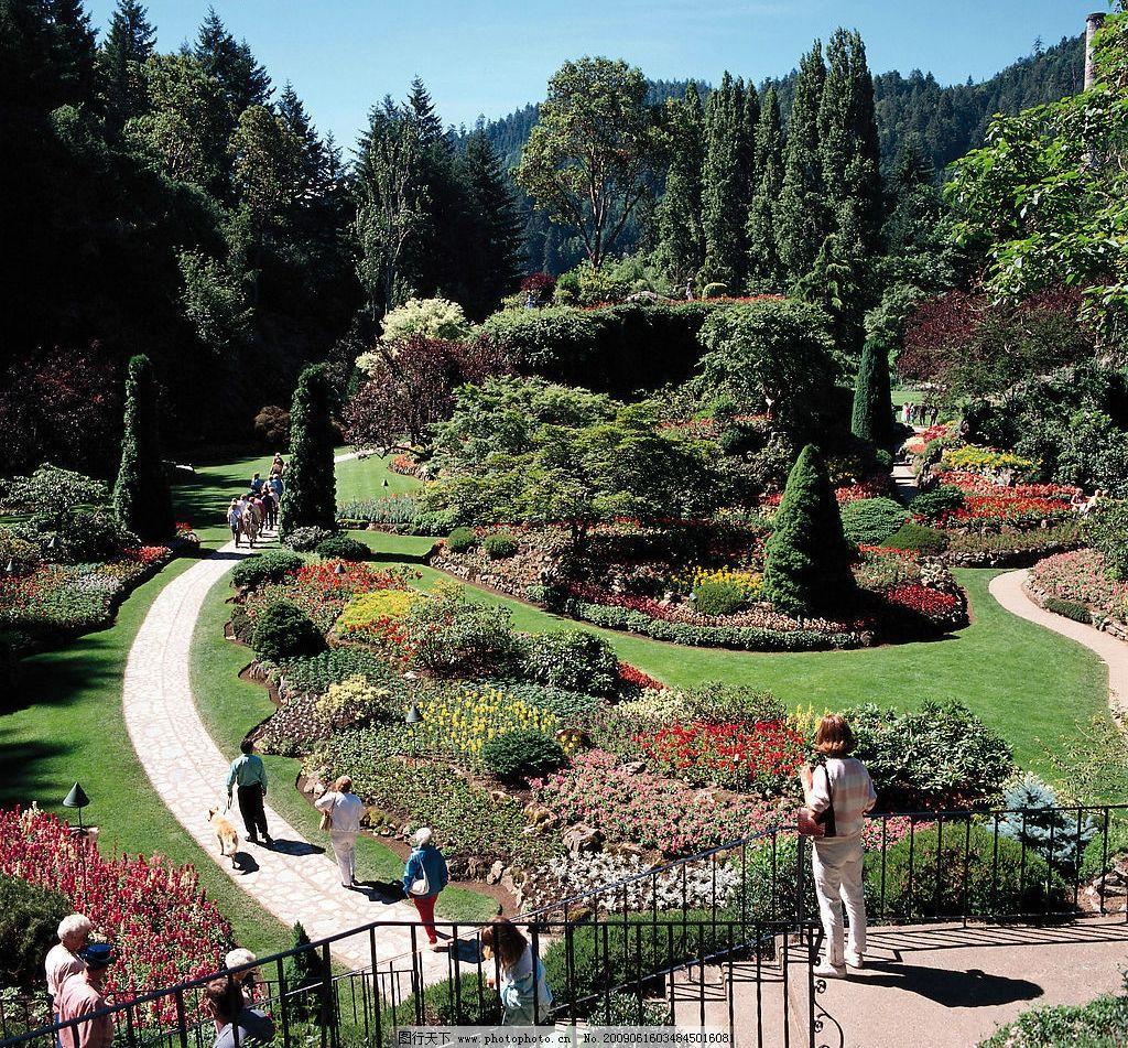 加拿大名胜 人物 公园 美景 松树 景观 自然景观 自然风景 摄影图库