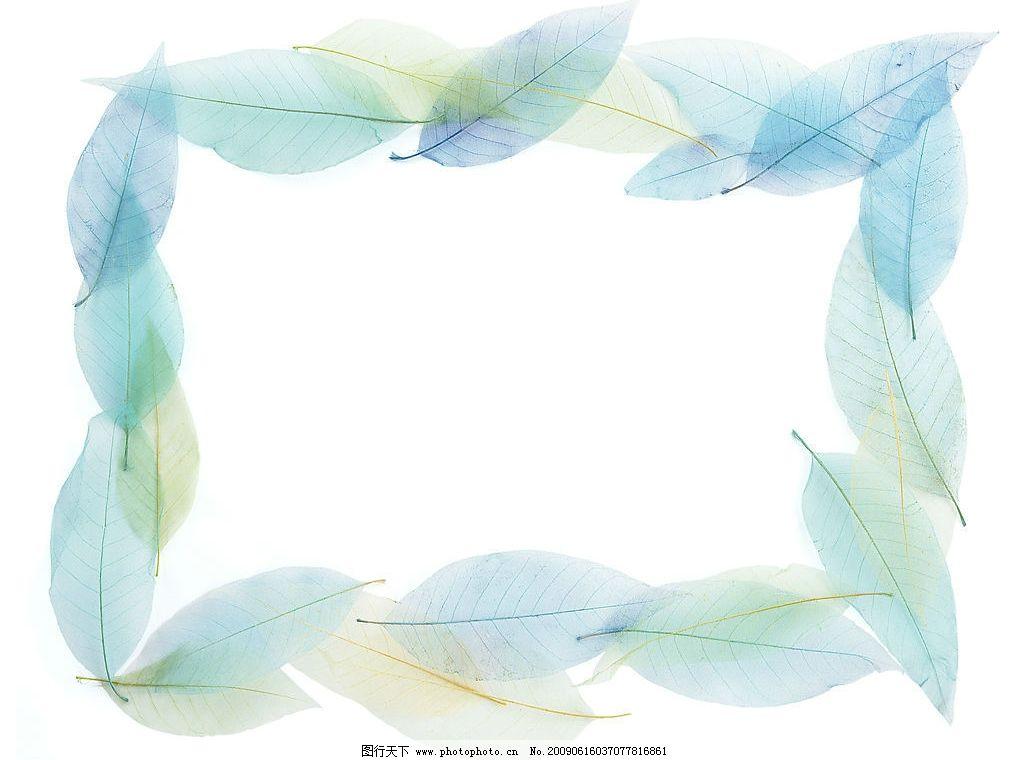 画框 相框 镜框 像框 油画框 叶子 叶脉 生活百科 生活素材 摄影图库