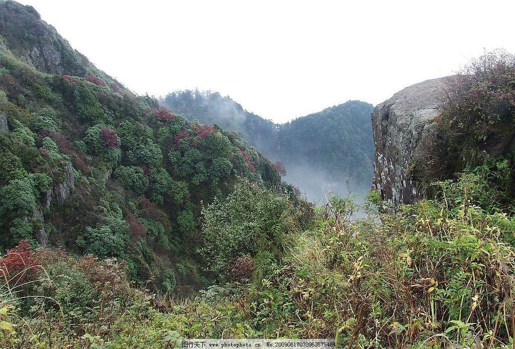 峨眉山美景 天空 山峰 树木 山林 花 石头 雾气 国内旅游 摄影图库