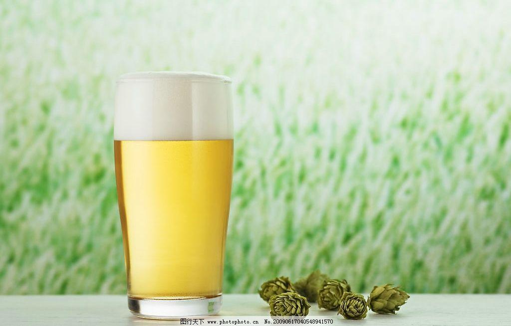 啤酒饮料 啤酒花 扎啤 大玻璃杯啤酒 生啤 一杯啤酒 一扎啤酒