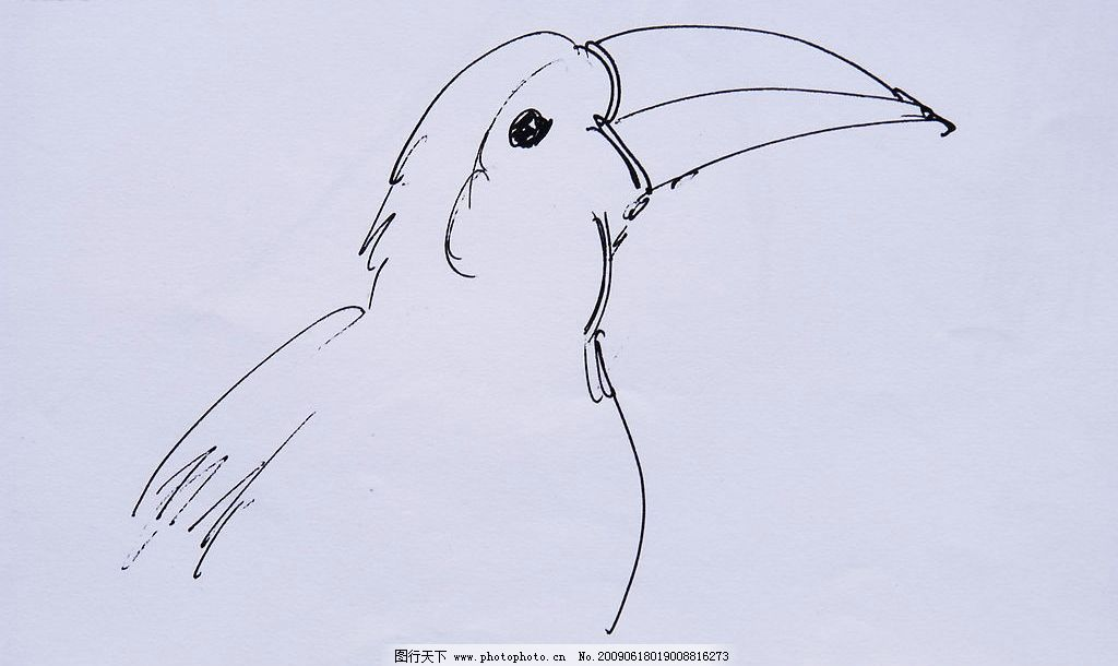 黑白线条画动物脸