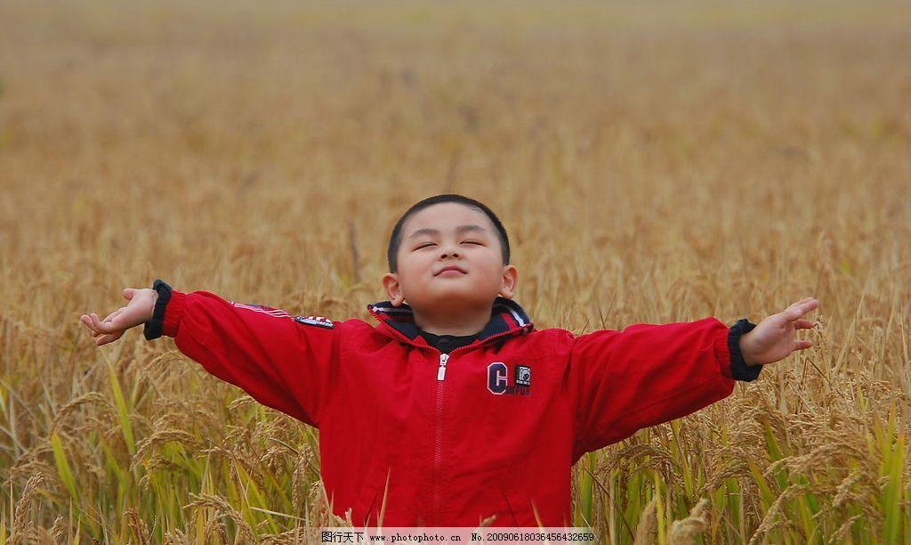 享受生活 麦田 享受 小孩 男孩 儿童 快乐 开心 呼吸 清新 大自然