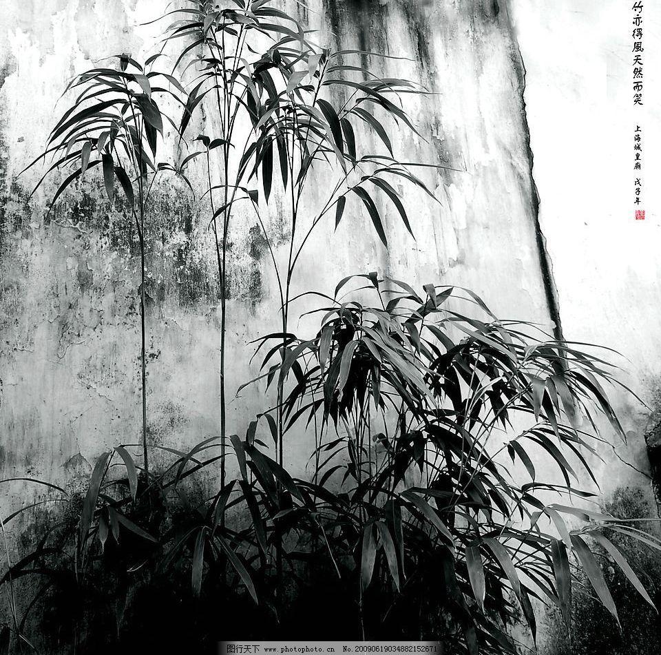 竹亦得风 竹林 竹子 黑白竹子 水墨 自然景观 自然风景 摄影图库