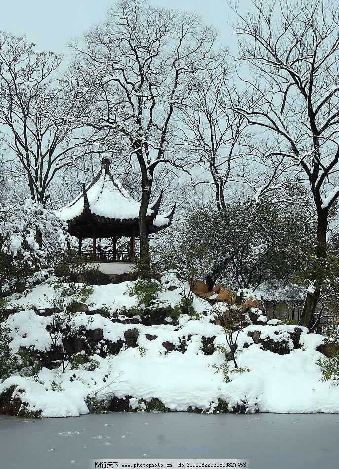 拙政园雪景 苏州园林 雪景 拙政园 亭子 树 早上 建筑园林 园林建筑