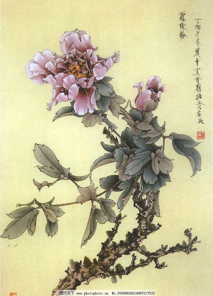 牡丹花 中国工笔画 书法 文化艺术 绘画书法 设计图库 400dpi jpg
