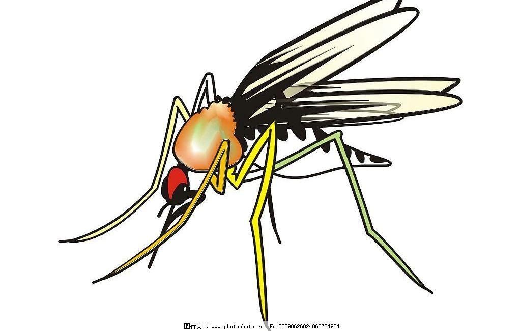 蚊子简笔画彩色