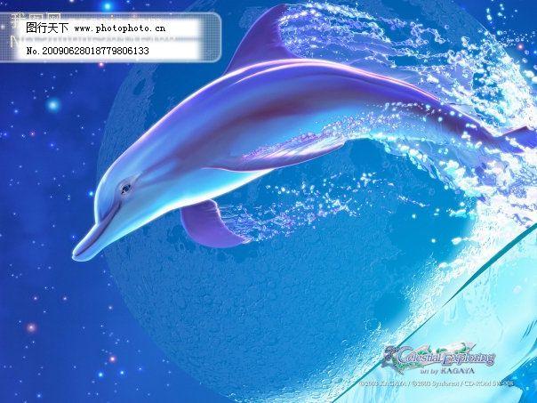 梦幻 蓝色海底,海豚 梦幻动漫桌面背景_可爱卡通_动漫