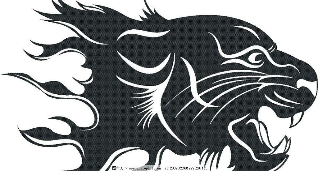 老虎头(合层位图)图片