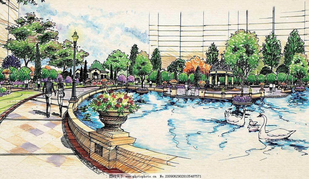 手绘景观 手绘 园林 景观 湖 天鹅 住宅小区 环境设计 景观设计 设计